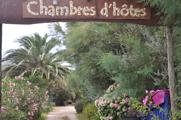 Mazet du Marechal Ferrant – Chambres d'hôtes En Camargue aux Saintes-Maries-de-la-Mer Logo